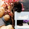 Poodle tiny high quality black  #4